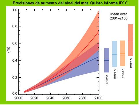 prevision de aumento del nivel del mar